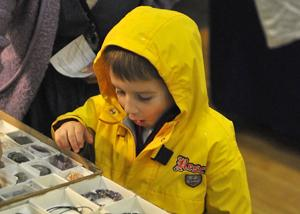 Joshua Lauretti, 5, of Bristol makes a discovery.